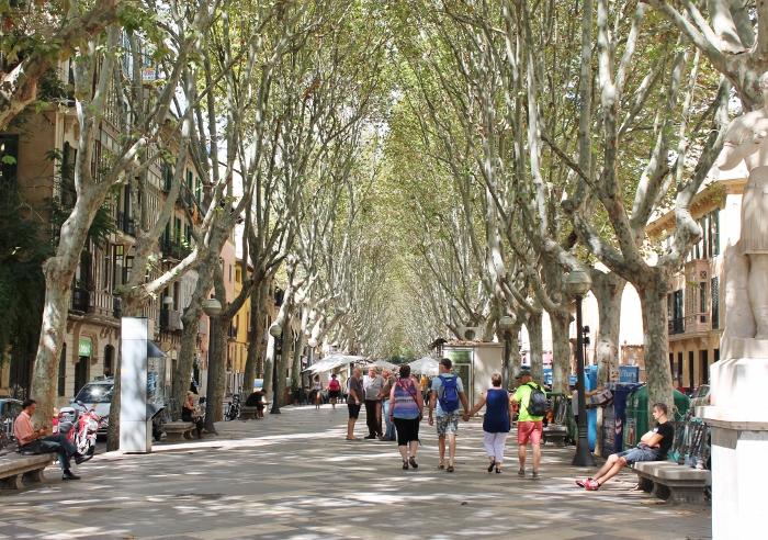 Rambles in Palma