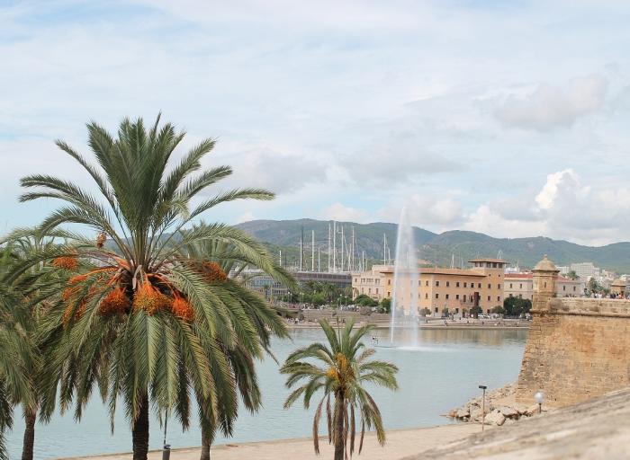 Lake opposite Palma Cathedral