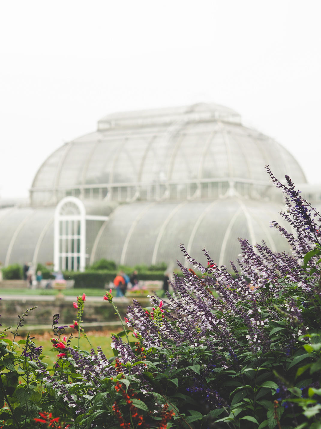kew gardens greenhouse