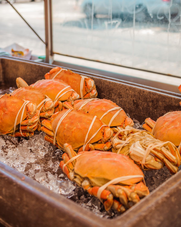 Crabs at Pier 39 in San Francisco