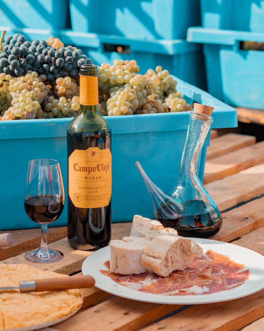 the campo viejo vineyard